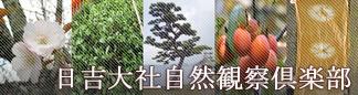 日吉大社自然観察倶楽部