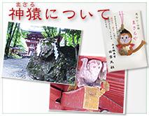 神猿について