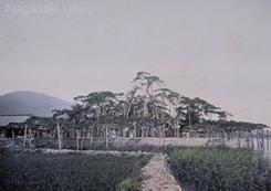 長崎大学附属図書館蔵