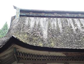 東本宮本殿 背面