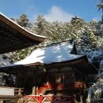 西本宮雪景色