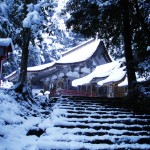雪景色は心をきれいにしてくれます。